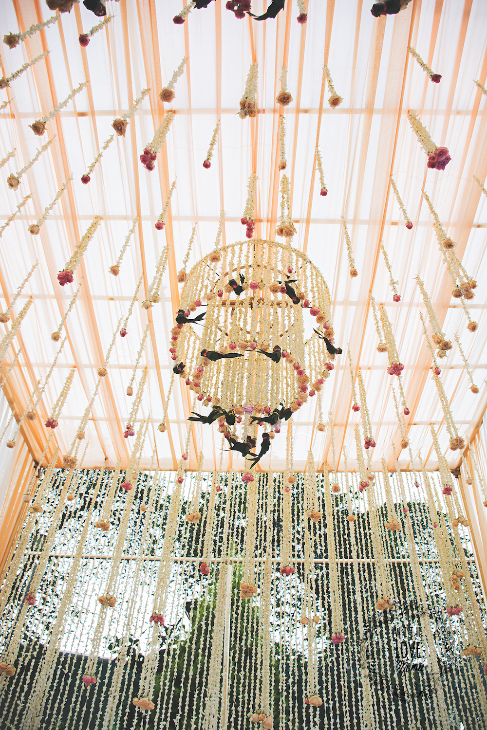 Curtain of Tuberoses with Floral Chandelier with ceiling of light peach colour