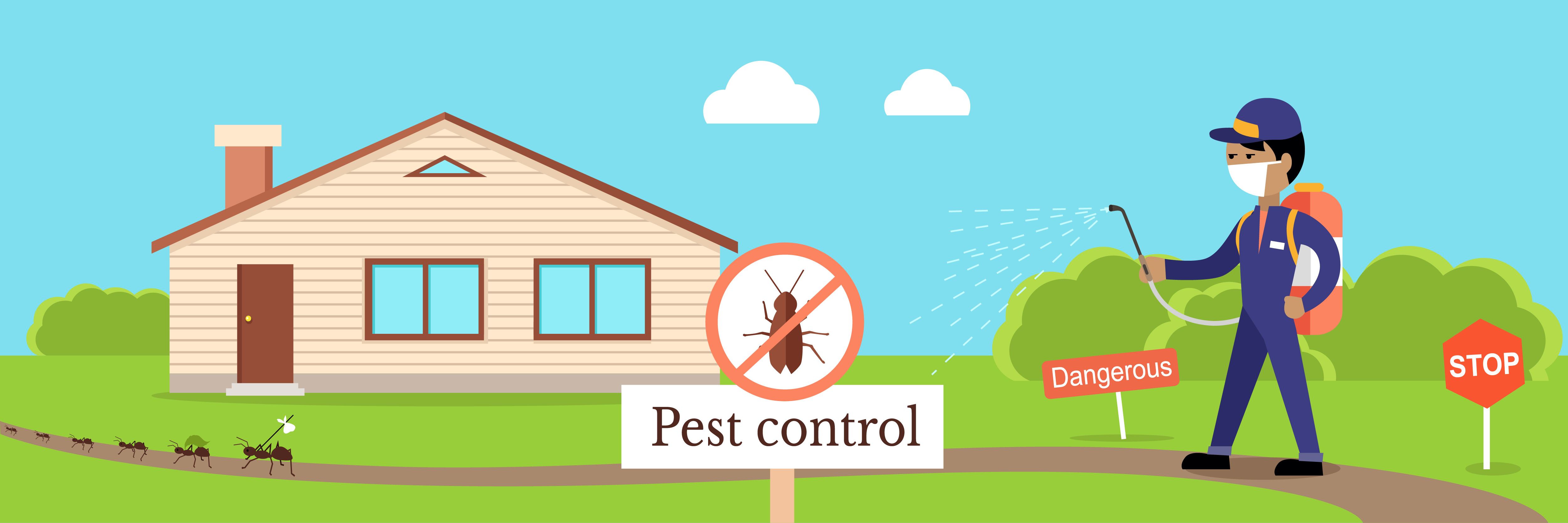 5 Reasons to Get Pest Control Done After House Cleaning (Tips & Tricks)