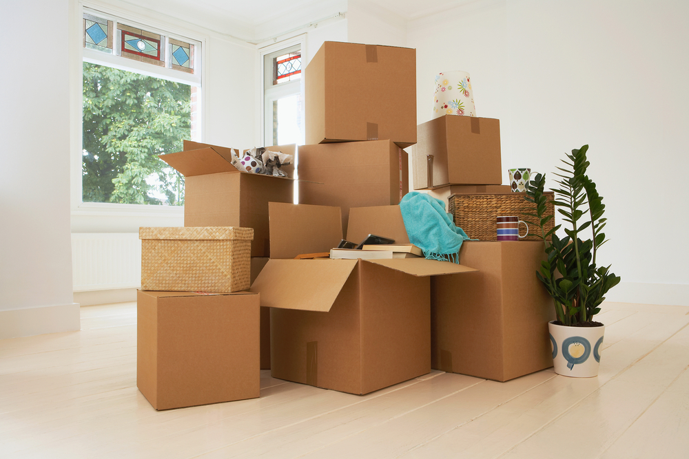 how to pack and move in one day