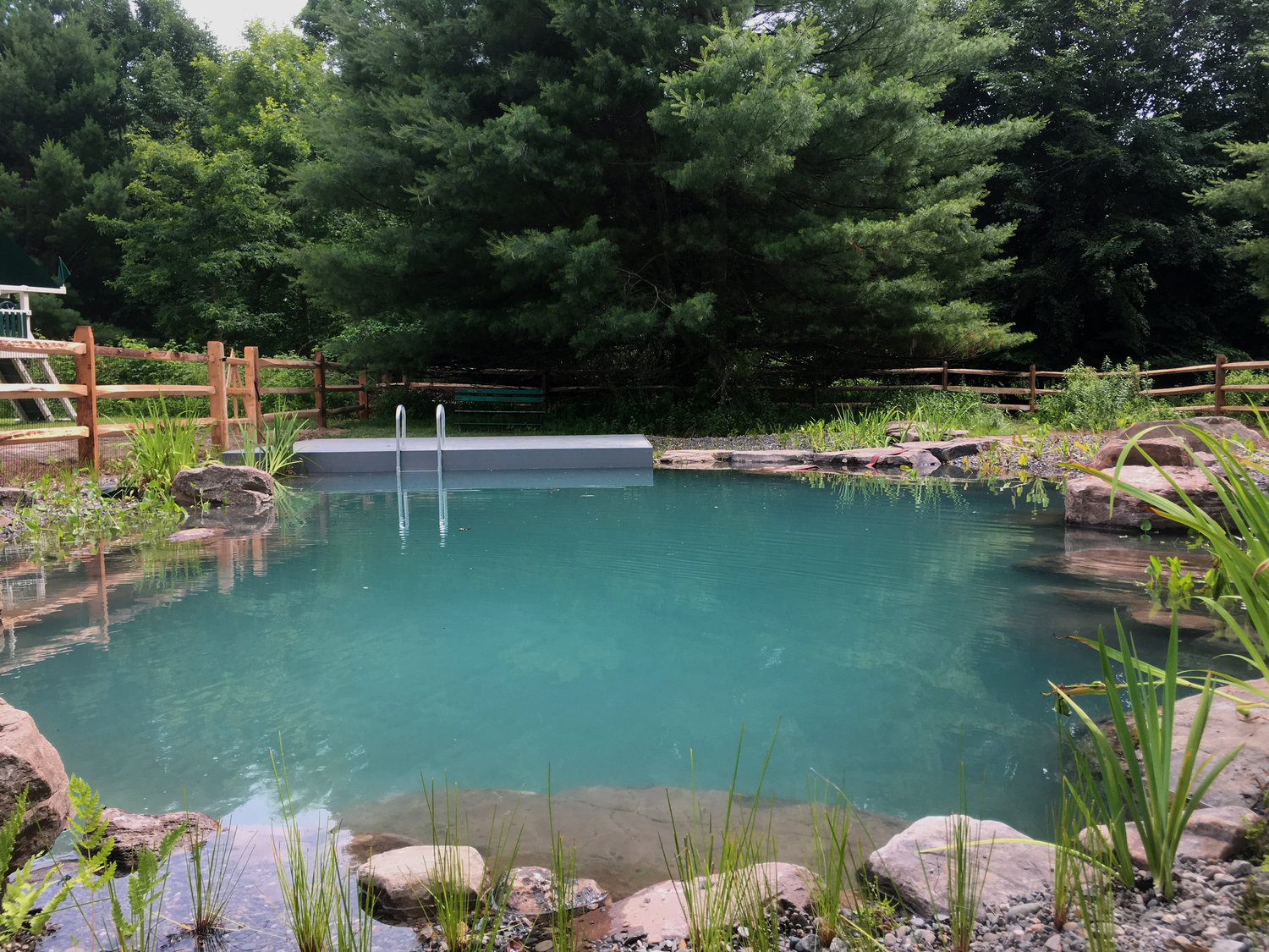 natural swimming pools pinterest home decor trends 2019