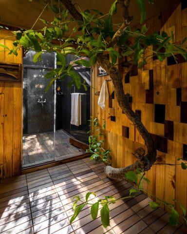 Escape to a tree house for your Bachelorette - Bachelorette trip Destinations in India