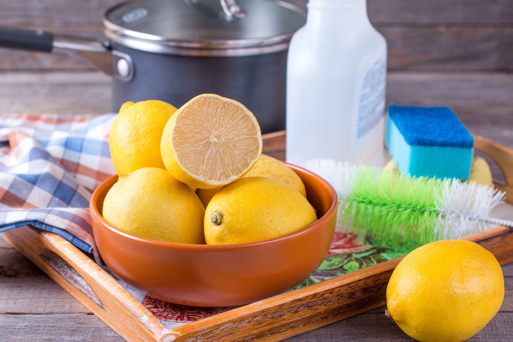 eco friendly natural methods to clean fridge