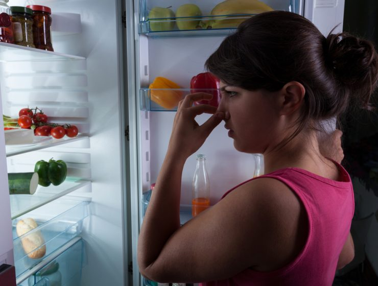 bad smell from the fridge