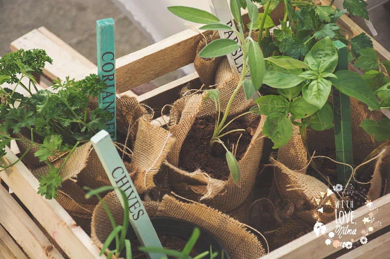Eco friendly wedding gifts