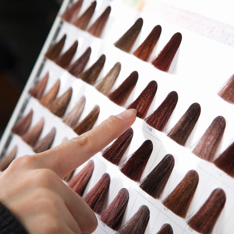 Garnier Hair Colour Range for Indian Skin Tones