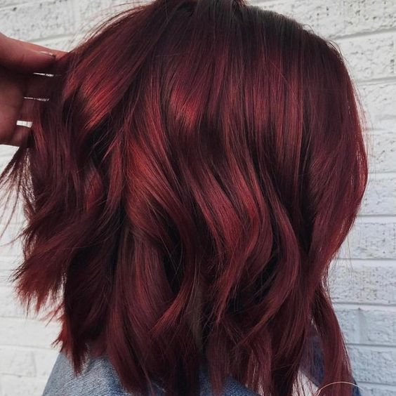 mulled wine burgundy hair color shade