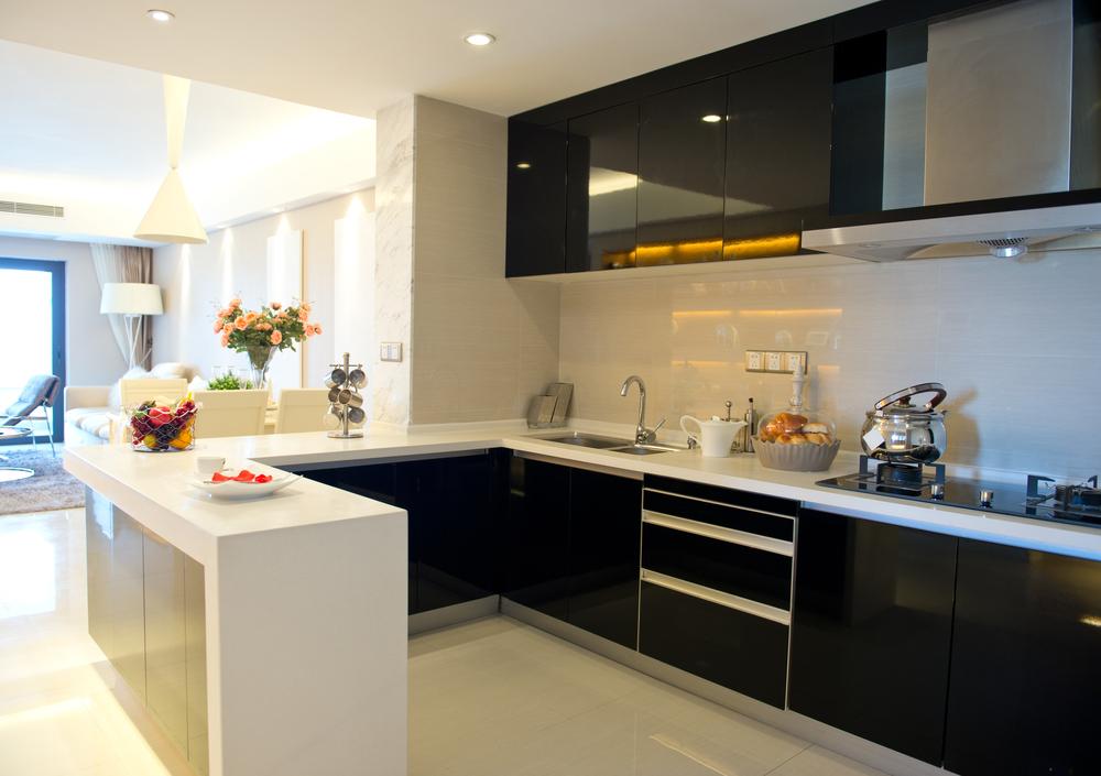 monochrome kitchen cabinet design