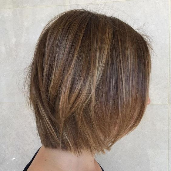 Hair Color Highlights Ideas For Indian Hair With Pics For Inspo